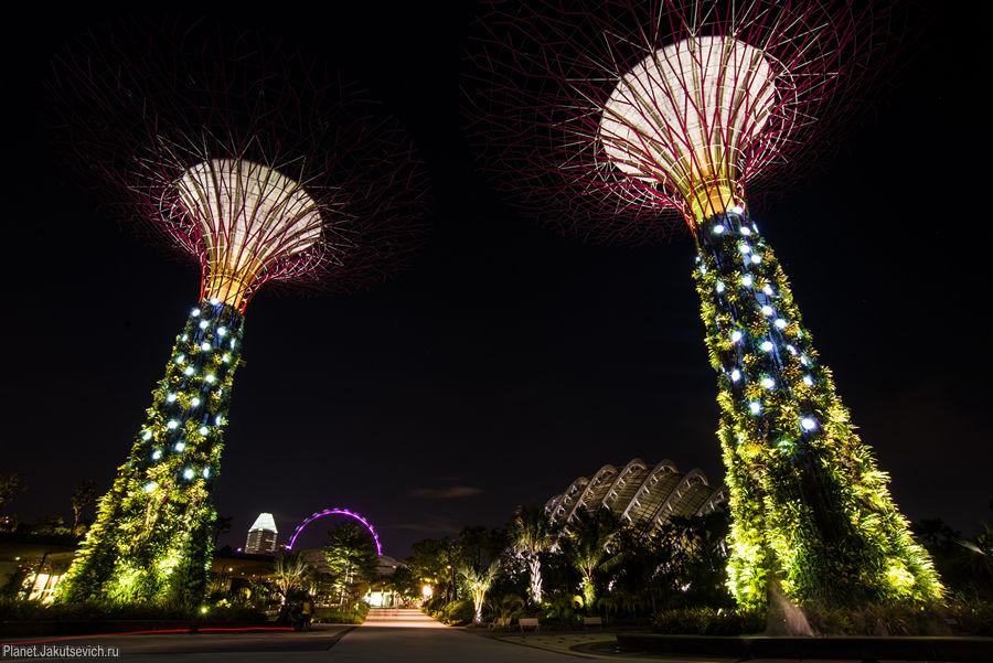 необычные места в сингапуре