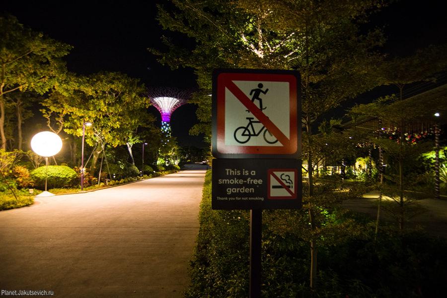 сады из будущего в сингапуре