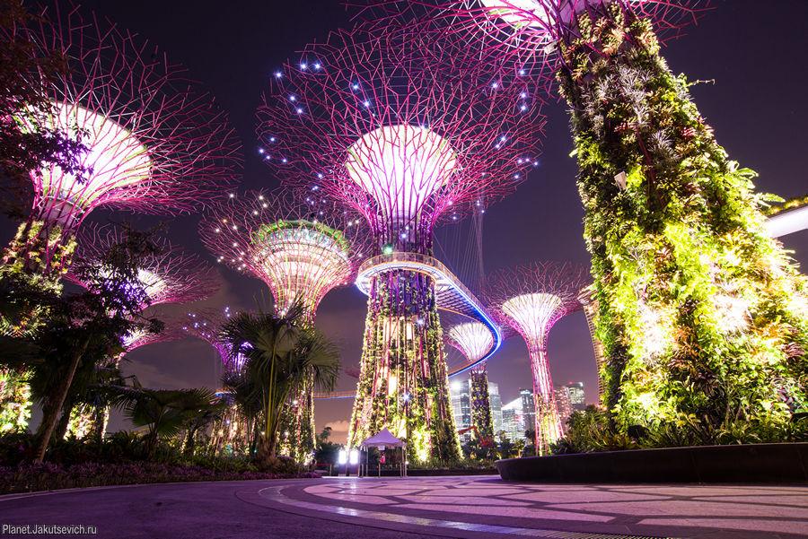 интересные места в сингапуре