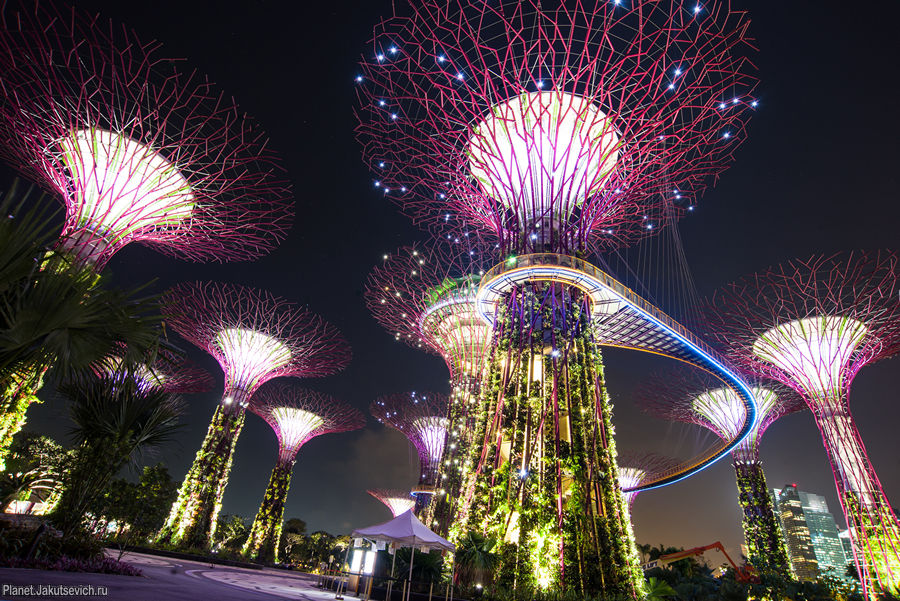 сады Gardens by the Bay в Сингапуре