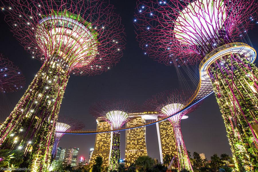 красивые места планеты -сады в Сингапуре