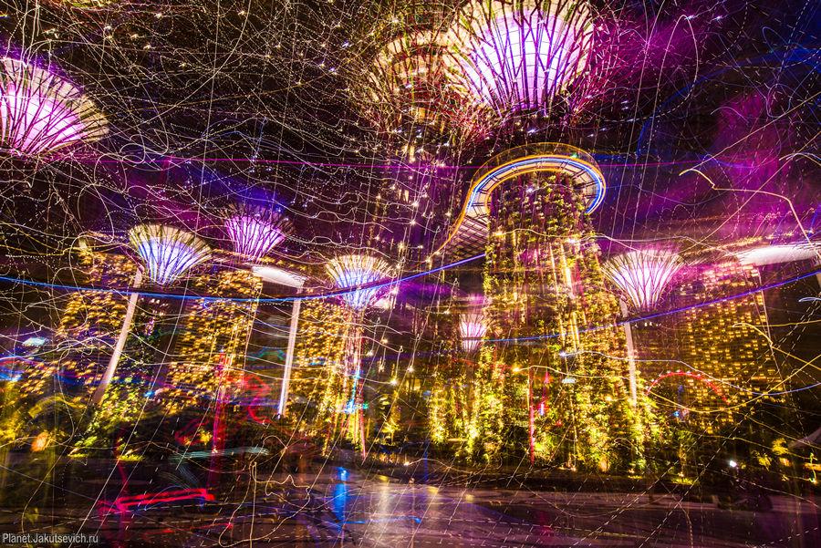 уникальные места - сады в Сингапуре