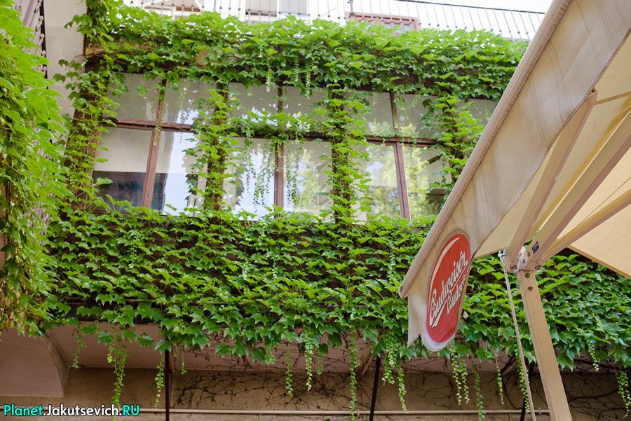 Restoran-v-Prage-Mon-Ami-05