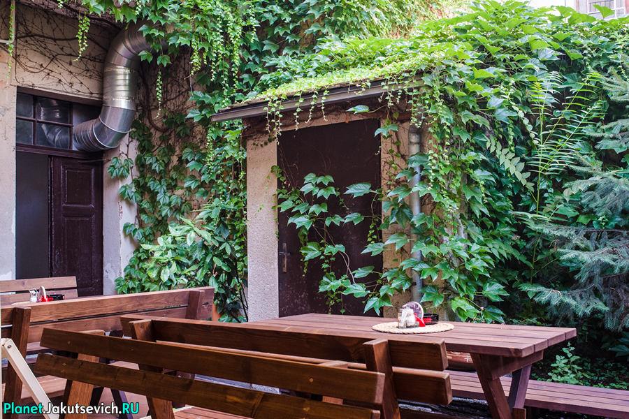 Ресторан в Праге Mon Ami