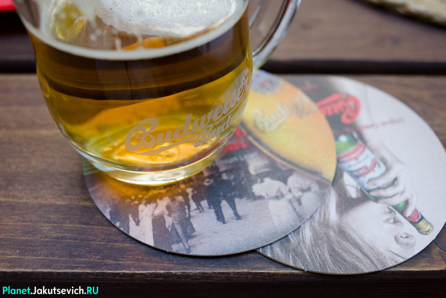 Restoran-v-Prage-Mon-Ami-cheskoe-pivo-budweiser