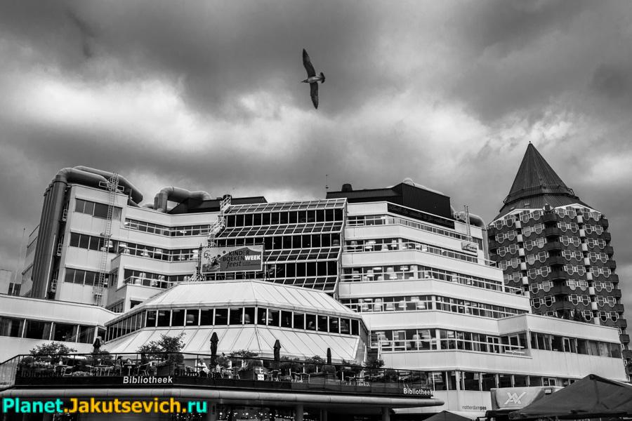 Rotterdam-foto-arxitektyra-goroda-06