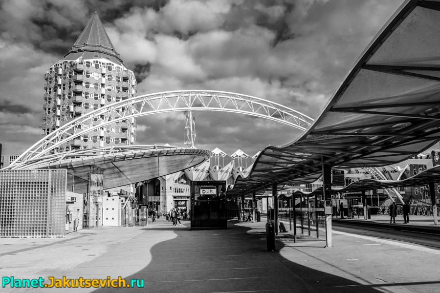 Rotterdam-foto-arxitektyra-goroda-08