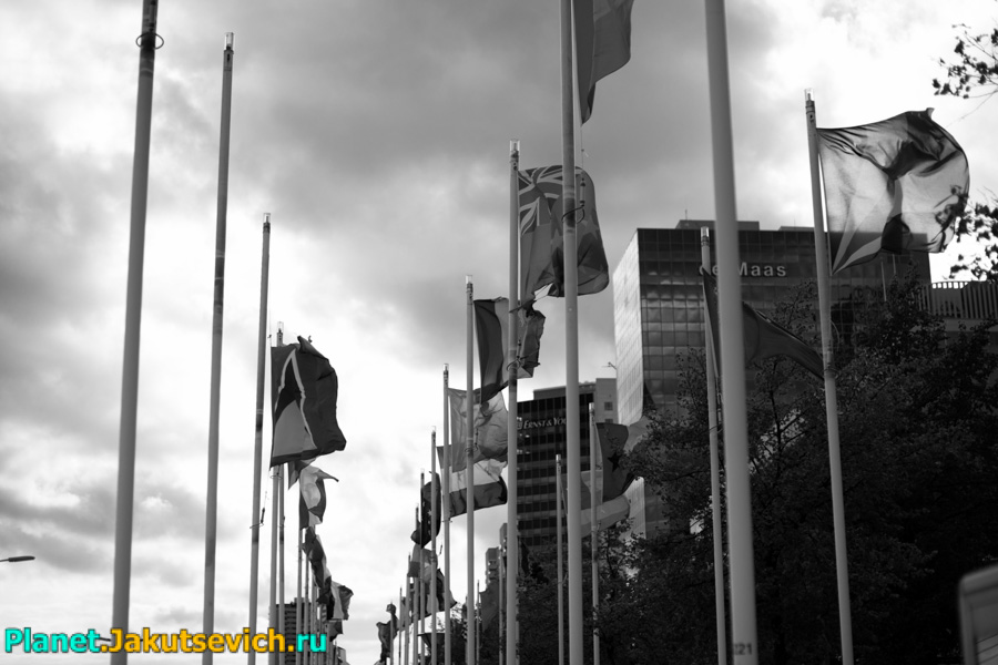 Rotterdam-foto-arxitektyra-goroda-19