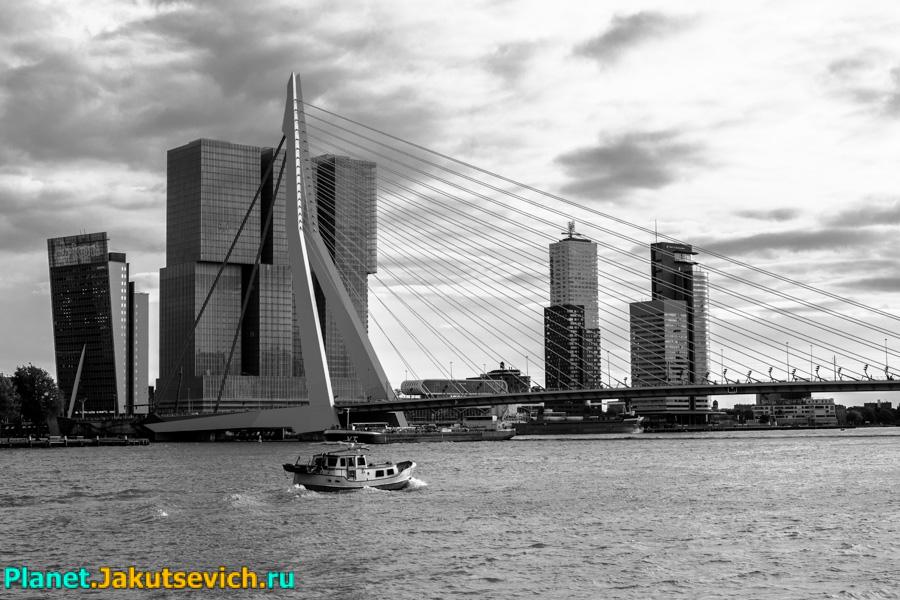 Rotterdam-foto-arxitektyra-goroda-23