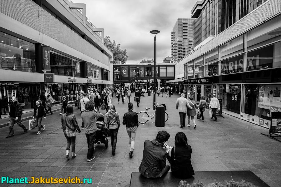 Rotterdam-foto-arxitektyra-goroda-40
