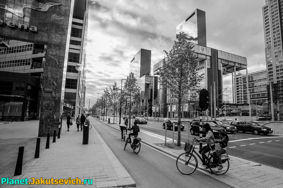 Rotterdam-foto-transport-velosipedy-17
