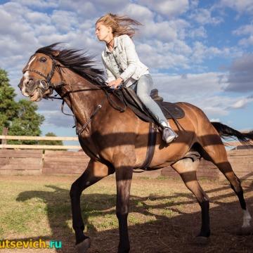 Катание на лошадях в Бресте