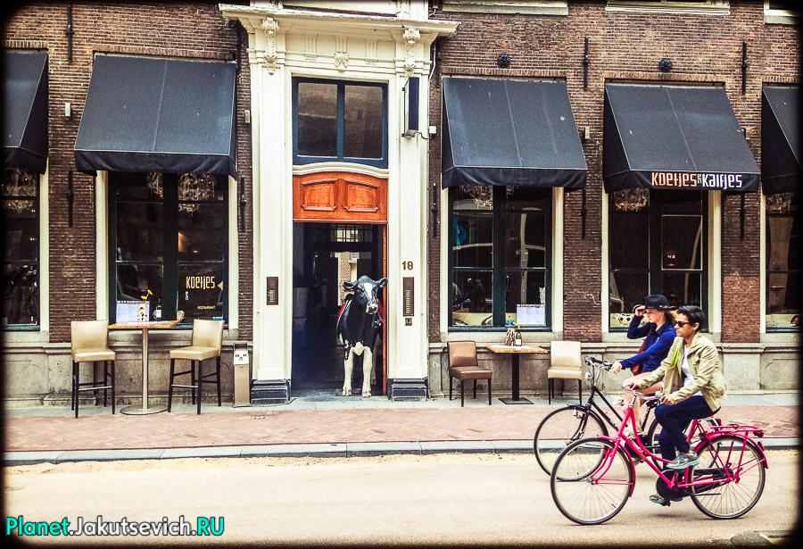 Лейден-Голландия-фото_сентябрь-2104-33