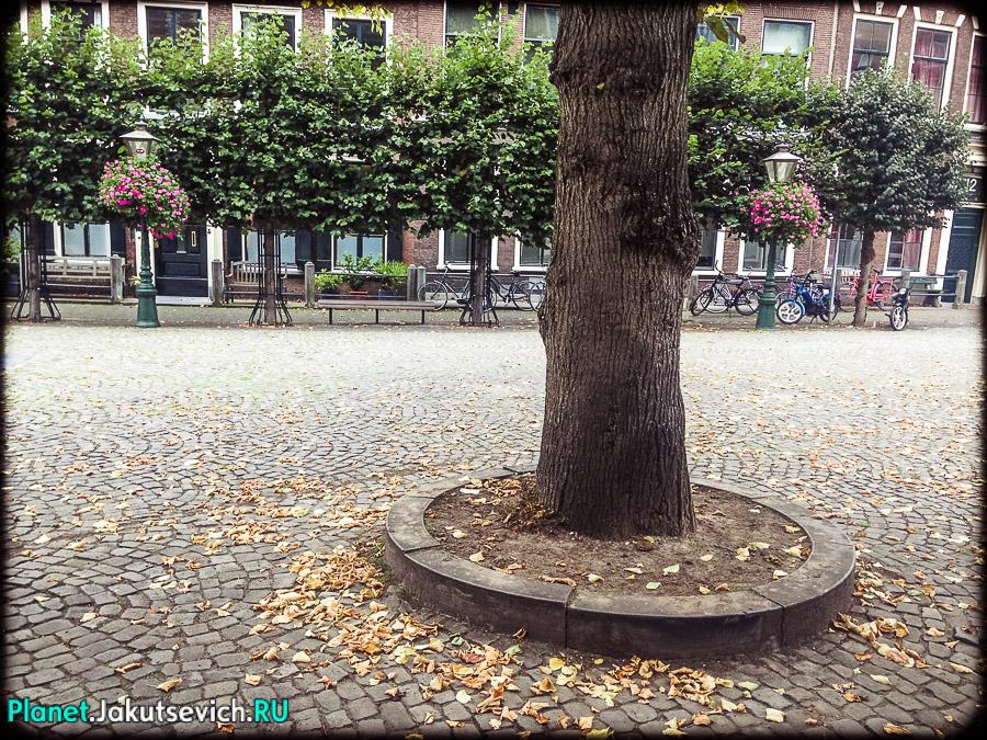 Лейден-Голландия-фото_сентябрь-2104-48