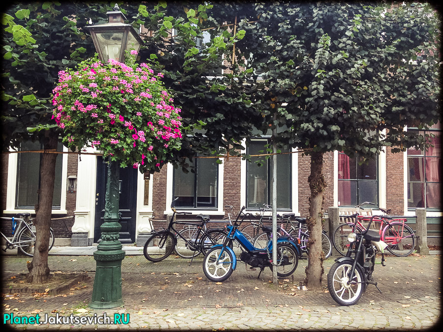 Лейден-Голландия-фото_сентябрь-2104-53