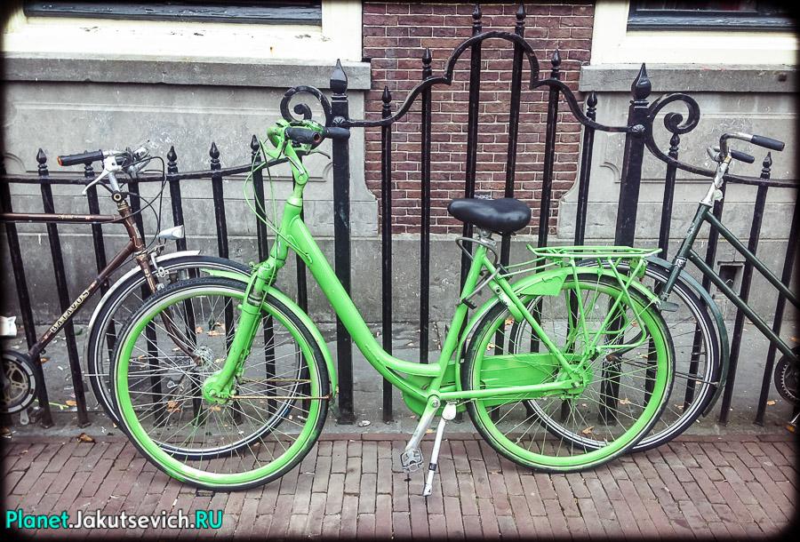 Лейден-Голландия-фото_сентябрь-2104-61
